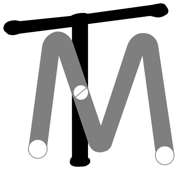 Dieses Bild hat ein leeres Alt-Attribut. Der Dateiname ist logo-TM-sw.jpg